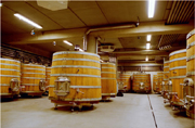 Wooden fermentation vats
